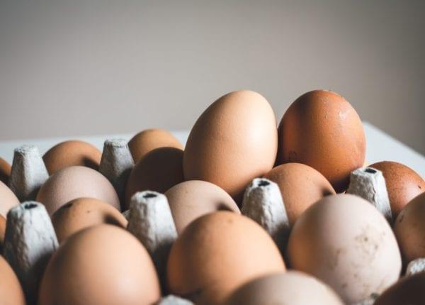 Yallamundi-eggs